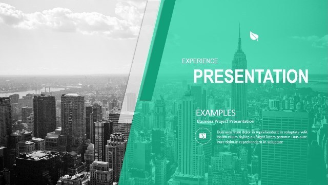 Experience Google Slide Presentation Template