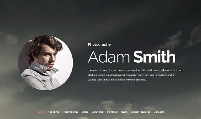 Pro Photographer One Page Drupal Theme