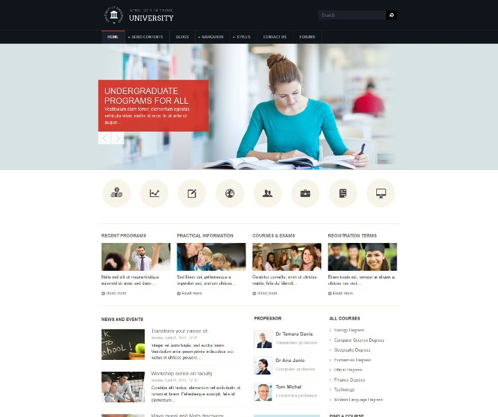 105 Best Free And Premium Drupal Themes