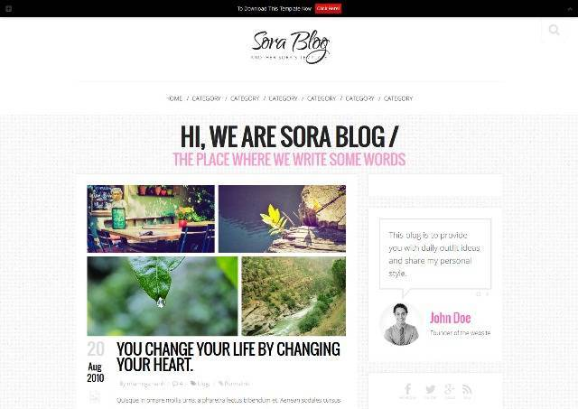 Sora Blog Personal Blogger Template