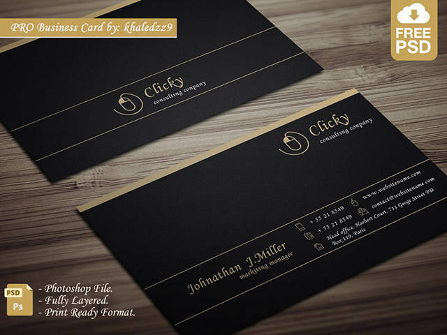Free Professional Business Card