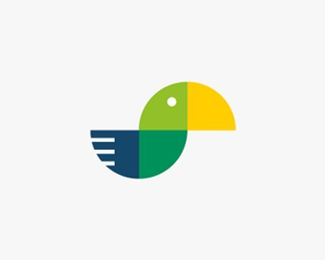 Bird + Pie Chart Logo Design
