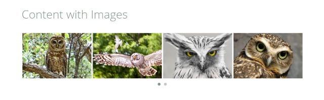 OWL Carousel jQuery Slider Plugin