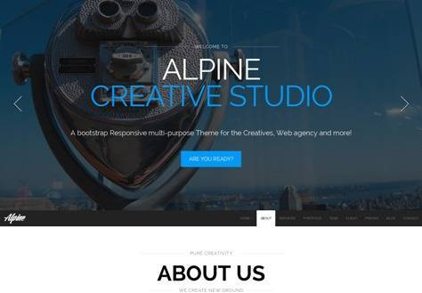 Alpine Responsive One Page Parallax Drupal Theme
