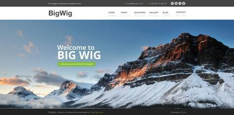 BigWig Modern Corporate Drupal Theme
