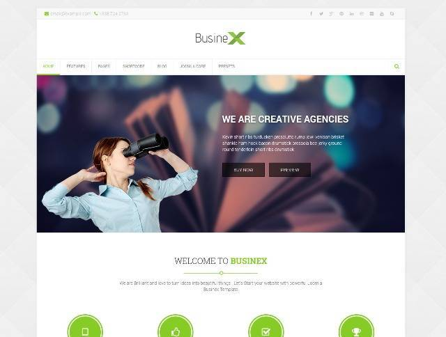 Businex Responsive Multi-purpose Joomla Template