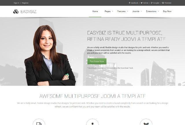 Easybiz Multipurpose Joomla Template
