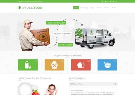 Organic Food Responsive Joomla Template