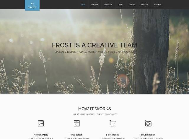 Frost Multipurpose One Page WordPress Theme