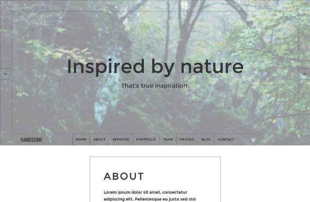 Handsome Responsive Influential WordPress Theme