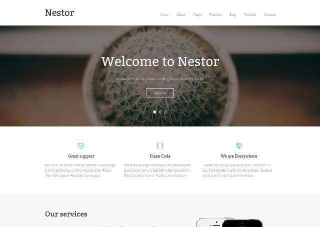 Nestor Responsive WordPress Theme
