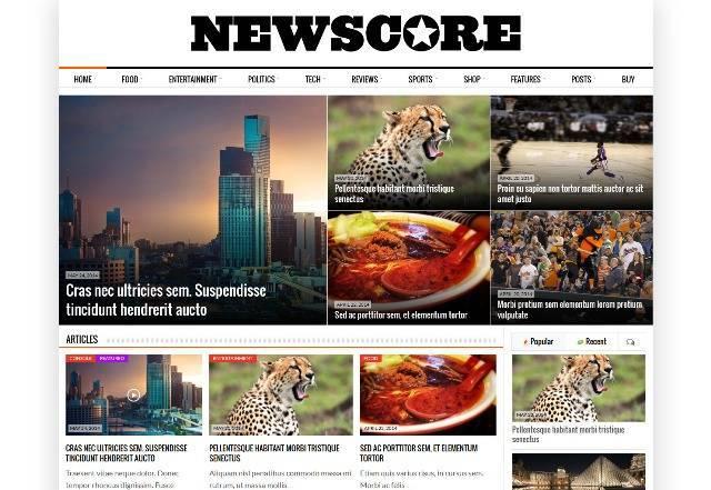 NewsCore - A Blog, Magazine and News Theme