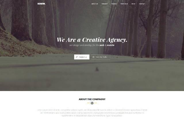 Renew Creative One Page WordPress Theme