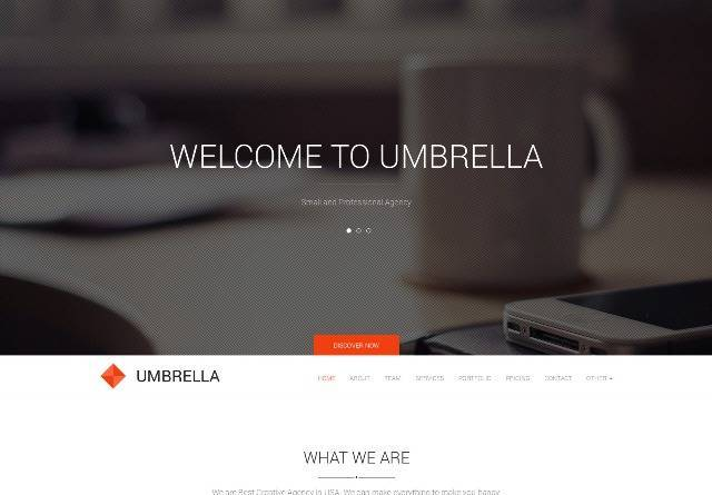Umbrella One Page WP theme