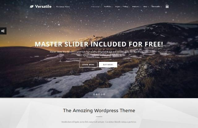 Versatile Responsive Multi-Purpose WP Theme