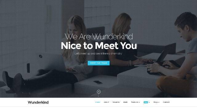 Wunderkind One Page Parallax WordPress Theme