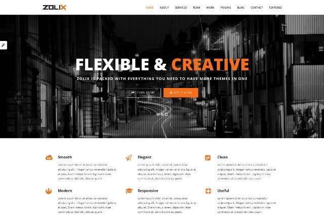 Zolix Parallax One/Multi Page WordPress Theme