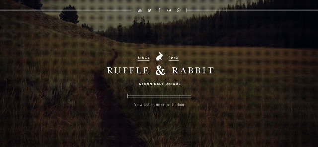 Rabbit Under Construction Website Template