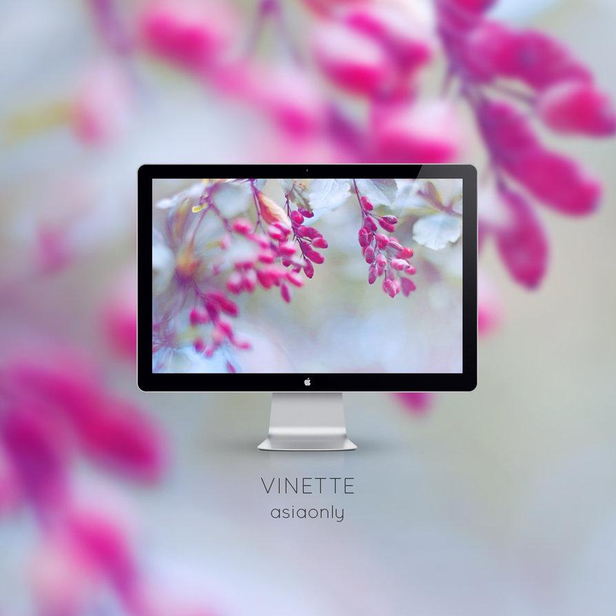 Vinette Wallpaper