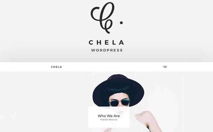 Chela - A Minimal Agency WordPress Theme